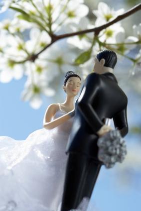Bride and Groom series